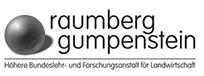grau logo raumberg